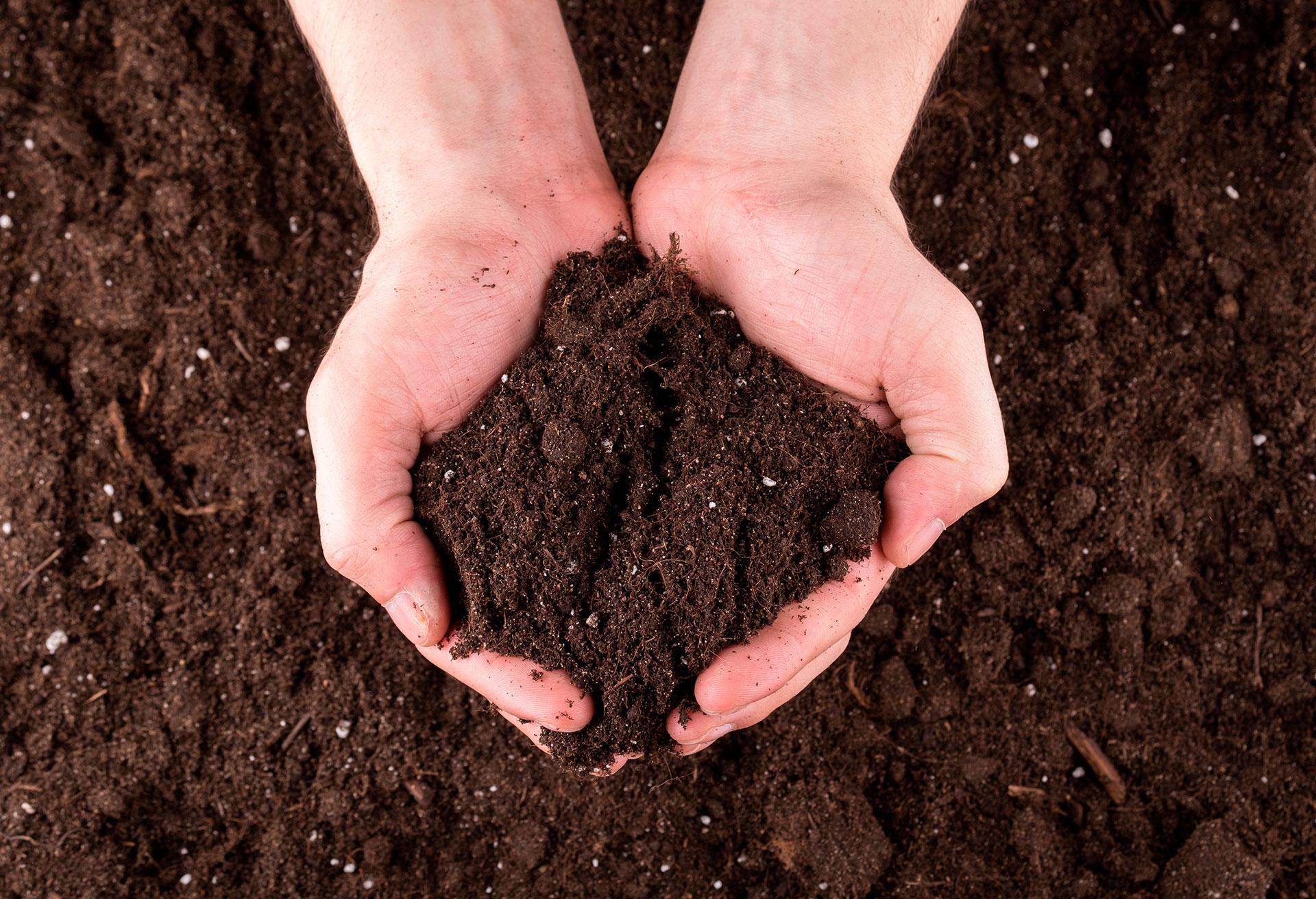 tierra-compost